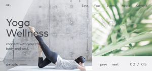 Asymmetrical Website Layout